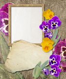 Grunge frame with pansy and paper Royalty Free Stock Images