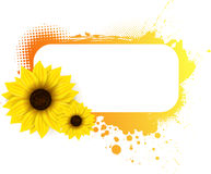 Grunge frame with sunflowers Royalty Free Stock Photography
