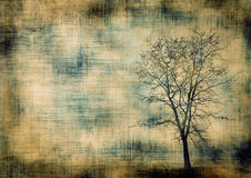 Grunge frame with tree Royalty Free Stock Images