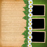 Grunge frames from old papers Royalty Free Stock Photo