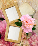 Grunge frames with peony  and paper Royalty Free Stock Photos