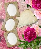 Grunge frames with peony  and paper Royalty Free Stock Photography
