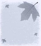 Grunge frostig bakgrund Royaltyfri Fotografi