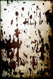 Grunge gepeld hout (Textuur) royalty-vrije stock foto's