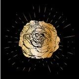 Grunge golden rose flower with burst on a black background . Vector illustration for postcards, calendars, posters, t. Shirts, prints, cards, flyer Royalty Free Stock Image