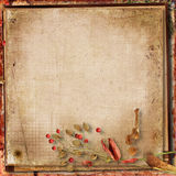 Grunge gorgeous autumn background. Grunge paper background with autumn leaves with place for photo and text. albums and covers Stock Images