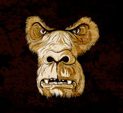 Grunge gorilla face Royalty Free Stock Photography