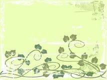 Grunge grape vine background Stock Images
