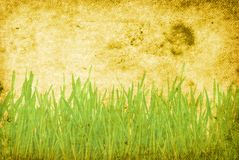 Grunge grass background Stock Photography