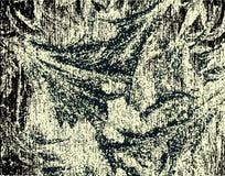 Grunge gravura a água-forte Imagem de Stock Royalty Free