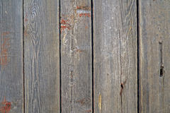 Grunge gray wooden texture background. Royalty Free Stock Image