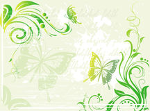 Grunge green background with floral element Stock Images