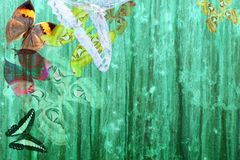 Grunge green color background with butterflies Stock Images