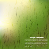 Grunge on green color with sunlight. Vector illustration Royalty Free Stock Images