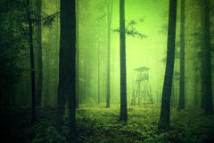 Grunge green colored scary dark woods hunting tower. Grunge green colored dark and scary light in forest with hunting tower. Yellow green colored forest hunting royalty free stock image