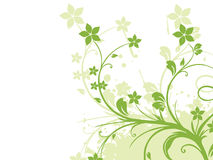 Grunge with green floral Royalty Free Stock Photo