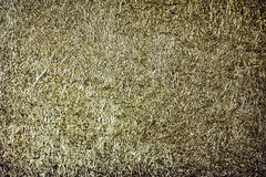 Grunge greenish paper texture background Royalty Free Stock Photos