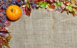 Grunge höstbakgrund med torkade leaves Arkivbild