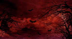 Grunge Halloween background with spooky trees Stock Photos