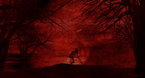 Grunge Halloween background with spooky trees Royalty Free Stock Images