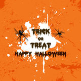 Grunge Halloween spider background Stock Photography
