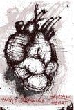 Grunge hand-drawn human heart Royalty Free Stock Photography