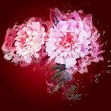 Grunge het schilderen pioenbloemen Stock Afbeeldingen