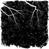 Grunge Hintergrund mit Zweigen Lizenzfreie Stockfotos