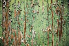 Grunge Holz-Hintergrund Stockfotos