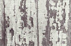 Grunge houten Abstract patroon, Retro Wijnoogst Stock Fotografie