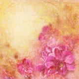 Grunge houten textuur met bloemenachtergrond Stock Foto