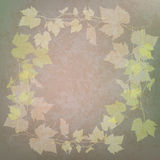Grunge illustration with grape leaves on green Royalty Free Stock Photos