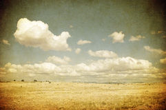 Grunge image of a field Royalty Free Stock Images