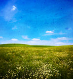 Grunge image of a field Royalty Free Stock Photos