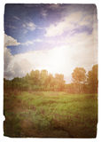 Grunge image of a green meadow Royalty Free Stock Photos