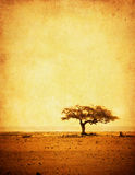 Grunge Image Of A Tree On A Vintage Paper Royalty Free Stock Images