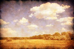 Grunge image of summer landscape Royalty Free Stock Images