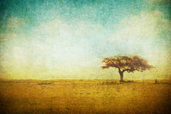 Grunge image of a tree over grunge background