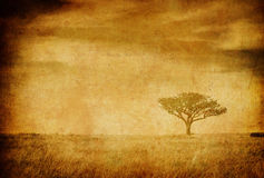 Grunge image of a tree on a vintage paper Royalty Free Stock Photo