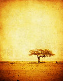 Grunge image of a tree on a vintage paper Stock Image