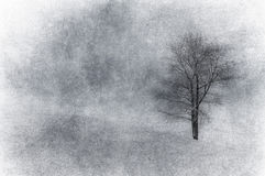 Grunge image of winter landscape Royalty Free Stock Photos
