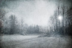 Grunge image of winter landscape Stock Photo