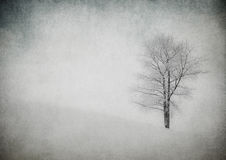 Grunge image of winter landscape Royalty Free Stock Image