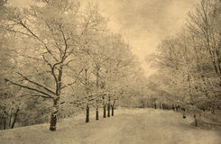 Grunge image of winter landscape Stock Image