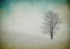 Grunge image of winter landscape Stock Photography