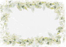 Grunge invitation postcard frame of lilies on a light blue background Royalty Free Stock Photo