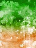 Grunge irlandese della bandierina Fotografia Stock Libera da Diritti