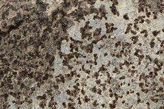 Grunge iron rust texture, old steel corrosion background. Surface Stock Images