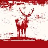 grunge jeleń Obraz Royalty Free