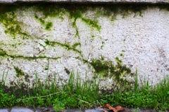 Grunge Kamienna ściana Zdjęcia Royalty Free